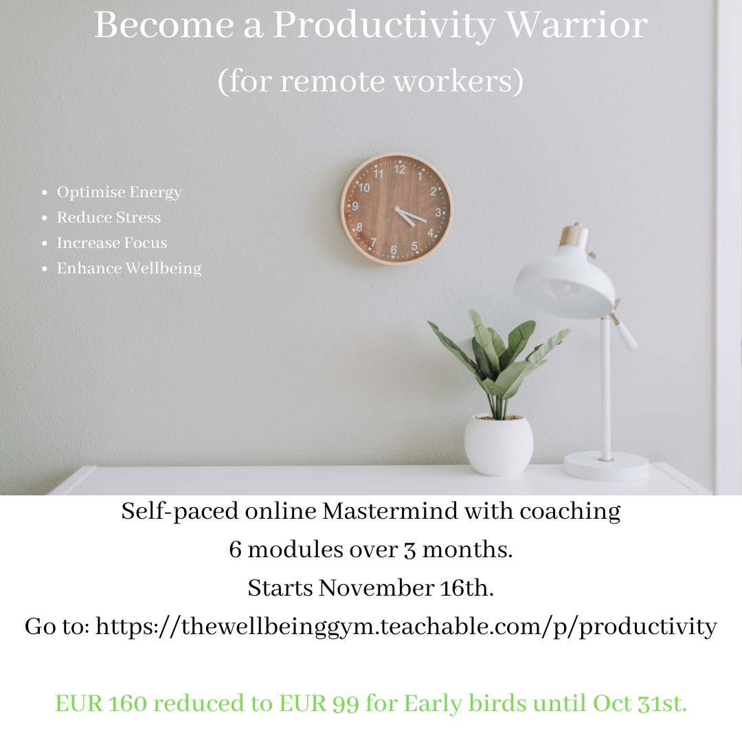 Productivity Warrior Flyer